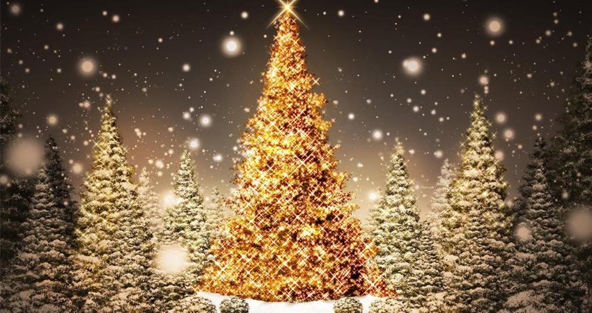 Les origines de l'arbre de Noël