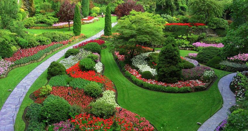 élagage jardin été