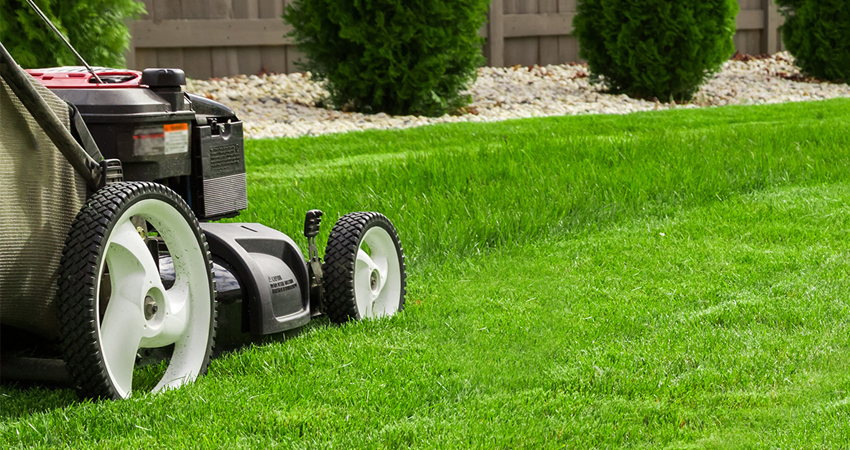 Nos conseils pour avoir un beau jardin tout l'été